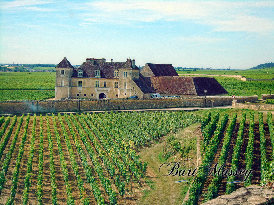 Day 2 Dijon Beaune and Cote Du Nuit or Hill of nigh (49 of 123)