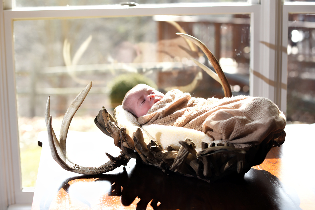 Newborn photographs by Bart Massey Photography